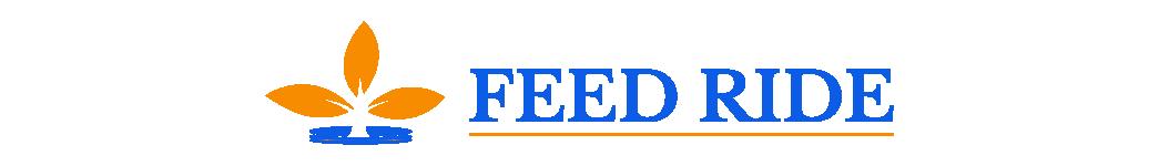 Feed Ride – An Online News Portal